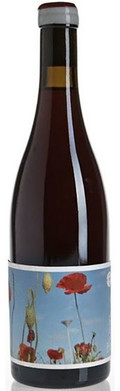 Ochota Barrels Home Single Vineyard Pinot Noir - Adelaide Hills