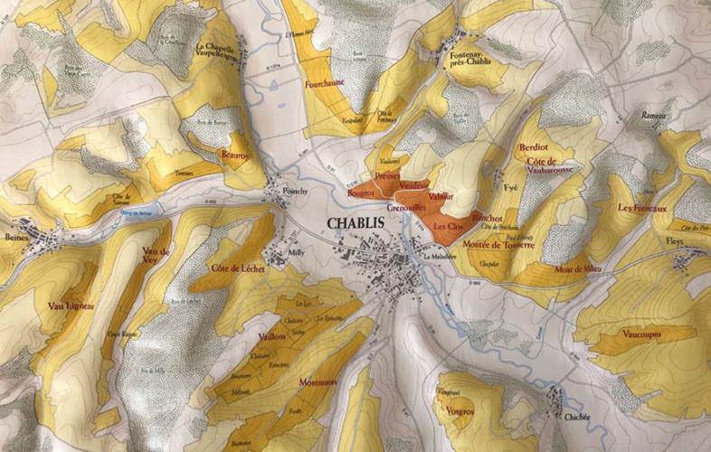 Discover Chablis