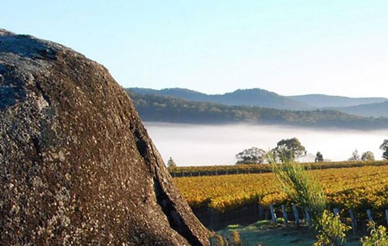 Queensland Wine